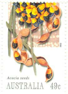 Acacia coriacea featured in a Bush Tucker stamp series