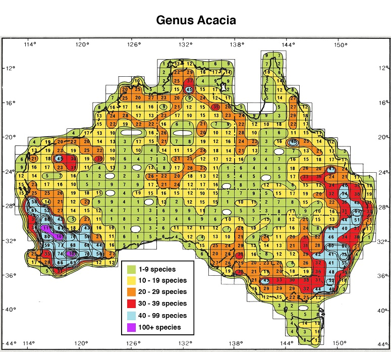 Distribution and phytogeography of acacia sens lat isoflor map of the genus acacia in australia gumiabroncs Images